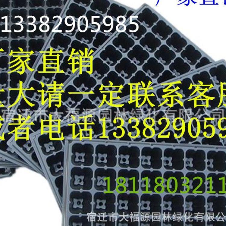 批发黑色PVC塑料育苗盘 穴盘 育芽盘 平盘加厚