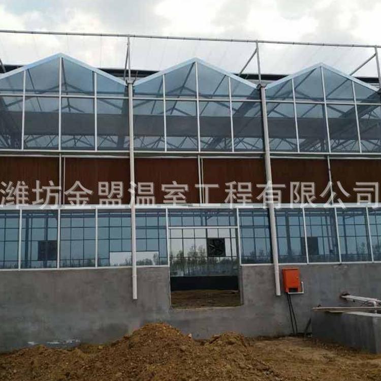 智能连栋玻璃大棚温室大棚 玻璃温室玻璃大棚阳光板大棚承建