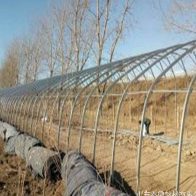 大棚骨架  草莓 蔬菜种植大棚 养殖大棚 农业大棚骨架 大棚配件