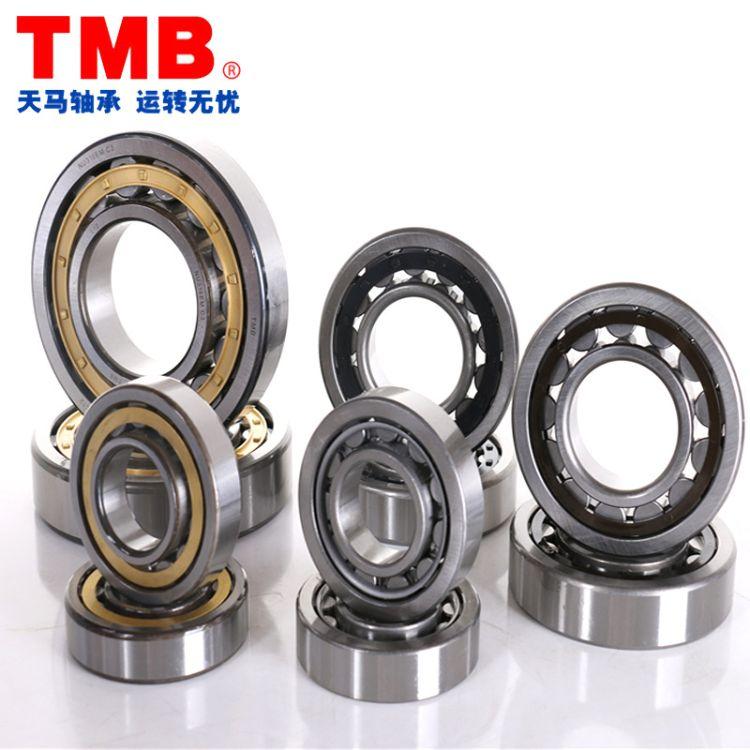 TMB品牌天马轴承 NJ1060M 42160H 圆柱滚子轴承 大中型电动机轴承