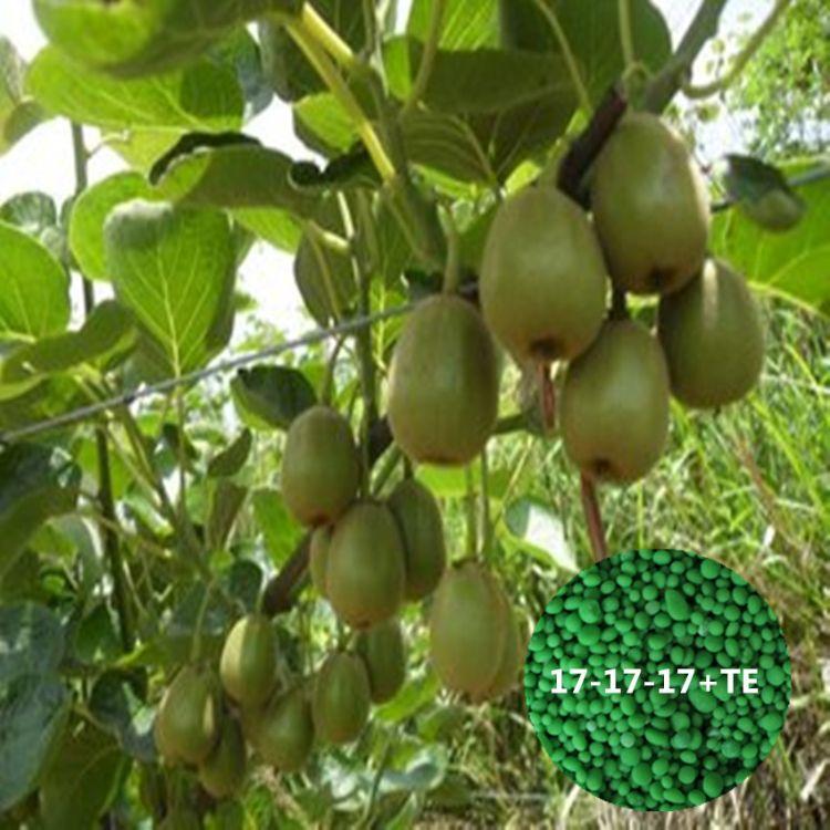 红心猕猴桃促果肥 硫基颗粒水溶肥 营养全面果树优质叶面肥全水溶