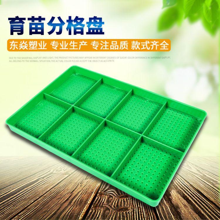 厂家直销绿色分格育苗盘 农用塑料育芽盘 聚乙烯PE种子水培发芽盘