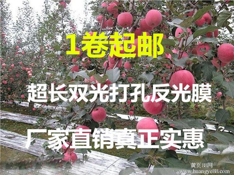 厂家直销大棚pet反光膜果树增色反光膜苹果葡萄大棚打孔反光膜