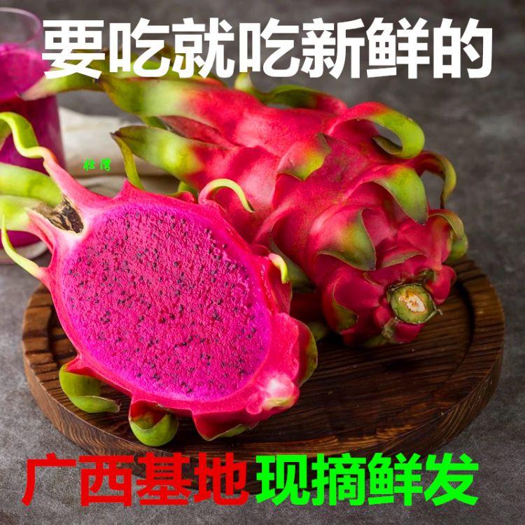 【328商人节大促】红心火龙果新鲜孕妇水果现摘火龙果果园直供