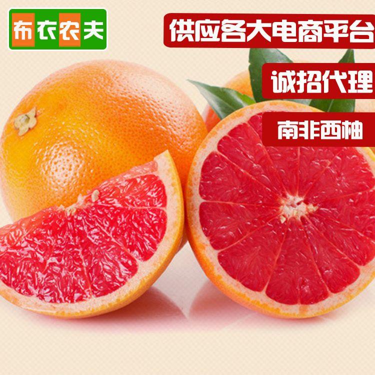 西柚南非新鲜红心西柚 单果250g-330g大果8个装孕妇水果坏果包赔