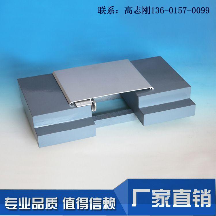 内墙单卡变形缝装置卡锁型IL1