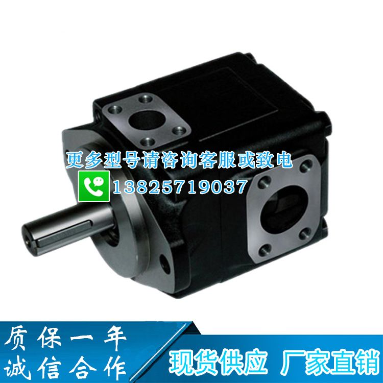 派克DENISON丹尼逊T7D-B42-1R00-A1M0高压油泵T7DS-B4...