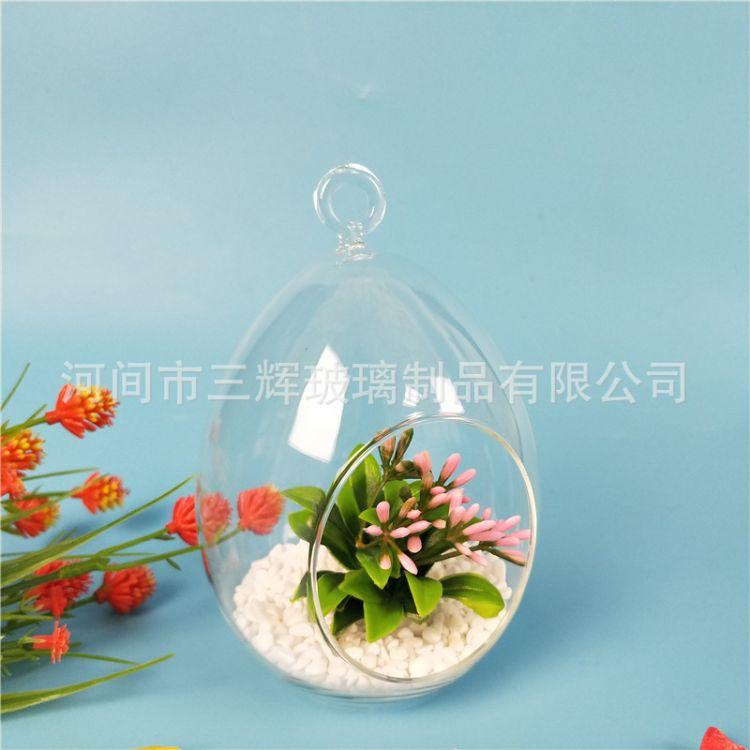 微景观生态玻璃瓶 多肉植物玻璃花盆 鸡蛋瓶 苔藓DIY玻璃花瓶