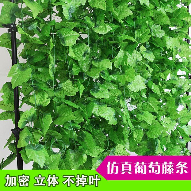批发仿真藤条 仿真葡萄叶藤 壁挂仿真植物 吊顶装饰假花叶子