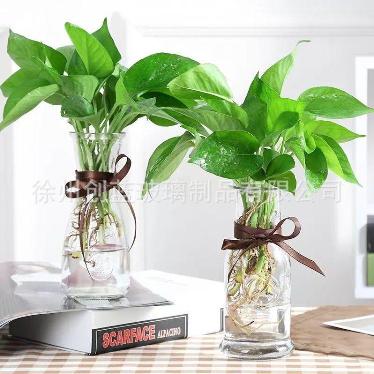 厂家直销玻璃花瓶水培玻璃花瓶 透明玻璃花瓶办公室餐厅摆放花瓶