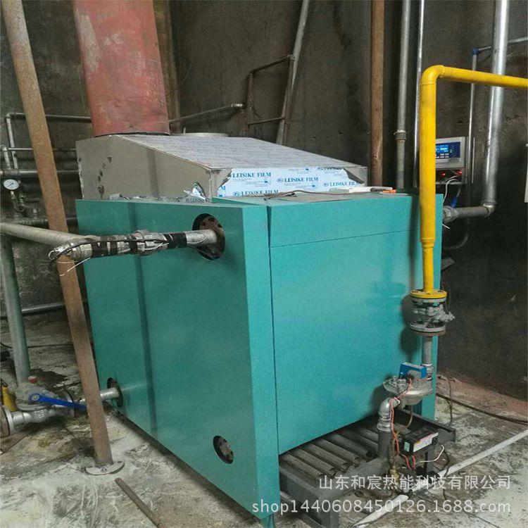 燃气锅炉生产厂家和宸牌低碳节能燃气采暖炉