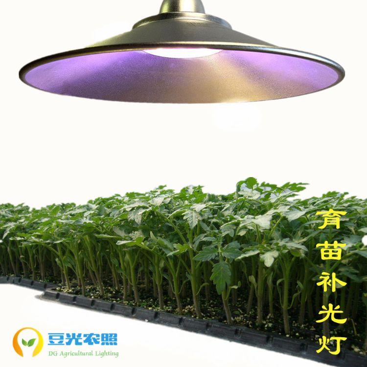 大棚育苗专用50W苗圃苗床温室喷雾快繁壮根强茎促芽生长补光灯