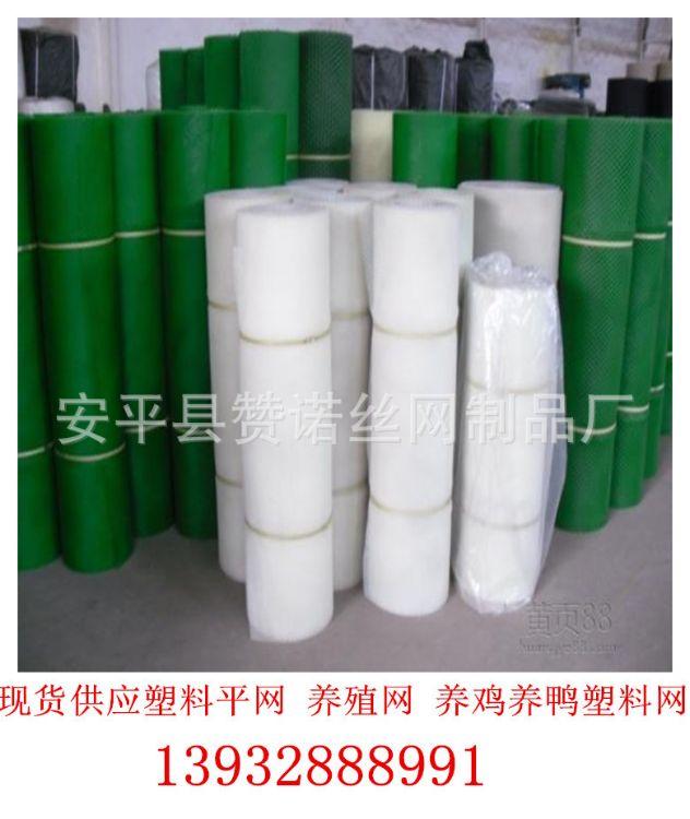 工厂大量批发白色育雏网 养殖网 养鸡塑料平网 脚垫网 结实耐磨