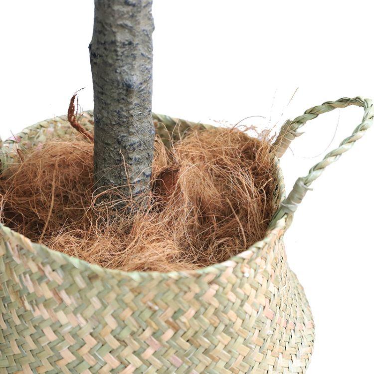 工厂椰棕丝透气花盆铺面装饰绿植干净植物通用定做