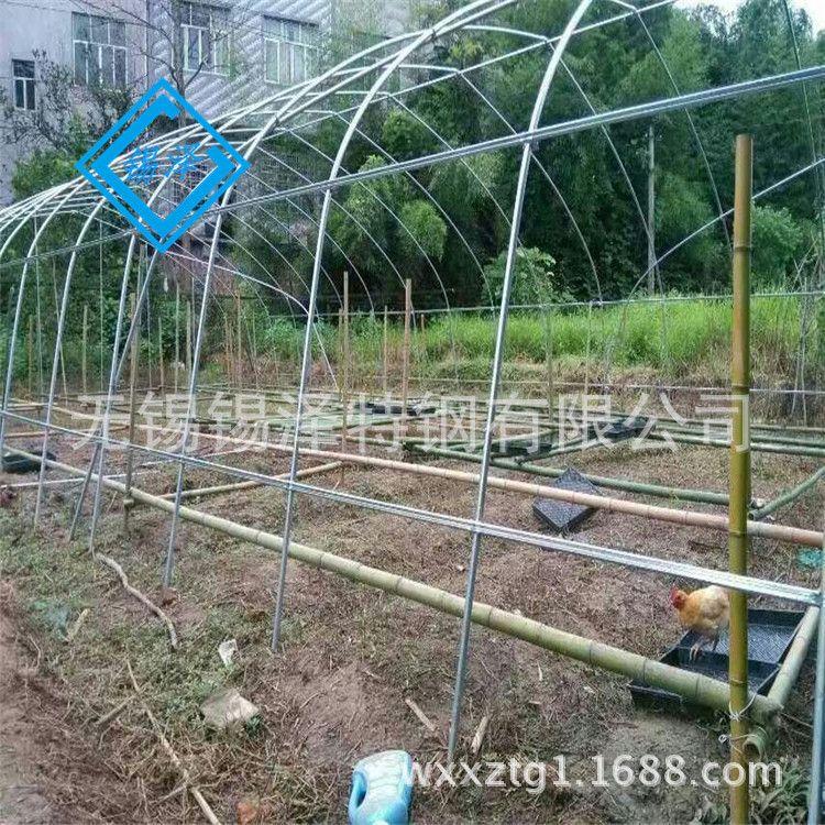 厂家直销镀锌管 连栋大棚塑料大棚骨架 蔬菜大棚骨架大棚养殖配件