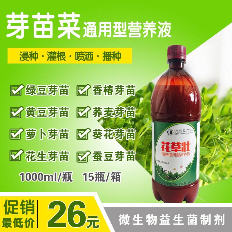 预防益生益生菌蔬菜水培蔬菜芽苗菜真菌营养液发芽水培菜水有益