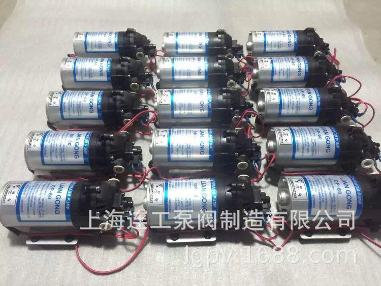 连工牌DP微型隔膜泵,电动隔膜泵,微型水泵