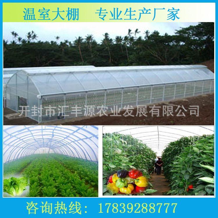 春秋大棚厂家 蔬菜大棚 单体温室大棚 塑料大棚 尺寸可定制