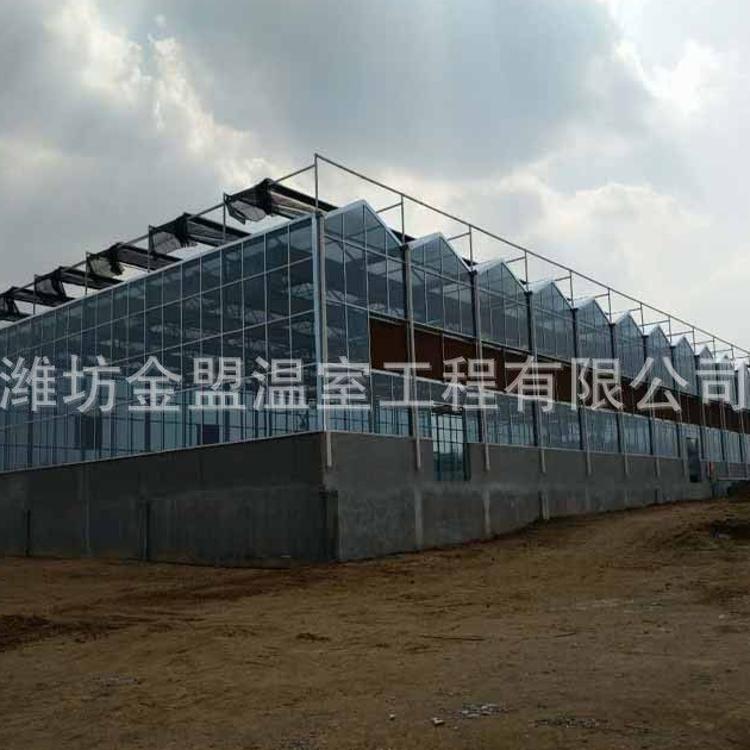 智能温室大棚承建厂家 玻璃温室大棚阳光板温室大棚生态温室大棚