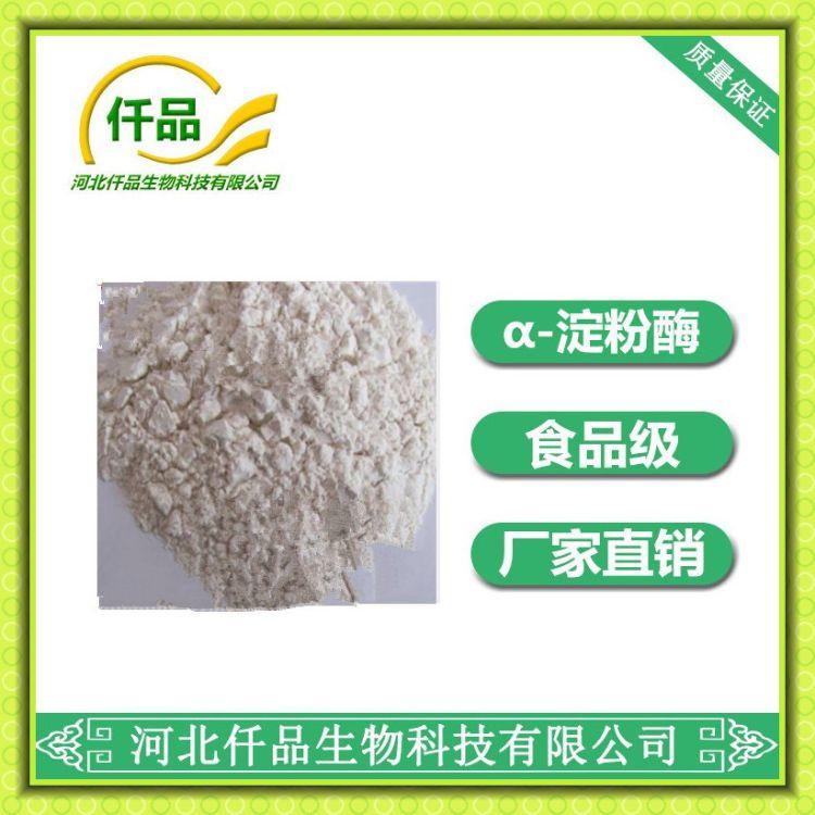 厂家直销优质酶制剂含量99%粉状【α-淀粉酶】 质量保证量大从优