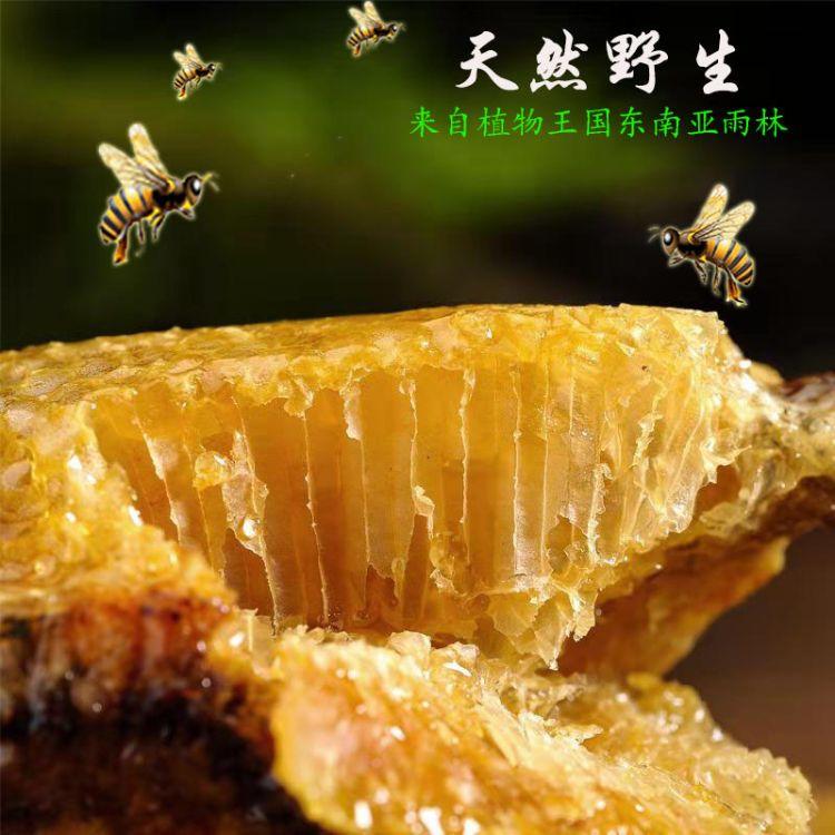 怪味小熊蜂巢蜜500g 农家野生蜂巢蜜 深山巢蜜野生土蜂蜜巢蜜
