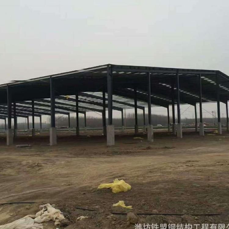 钢结构工程钢结构车间生产加工厂房车间梁场料棚轻钢结构拱棚厂家