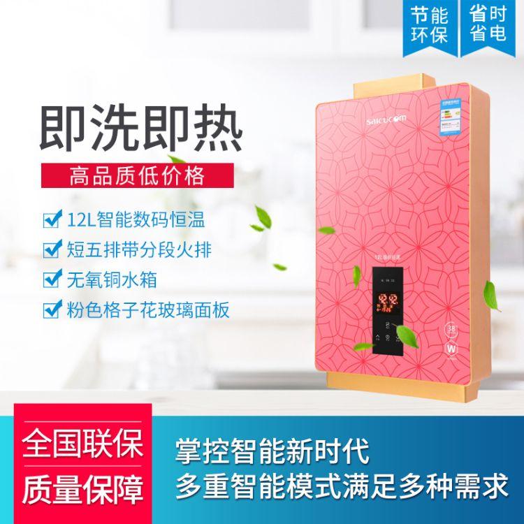 粉色12L智能数码恒温燃气热水器 型号5851即热式热水器 支持批发
