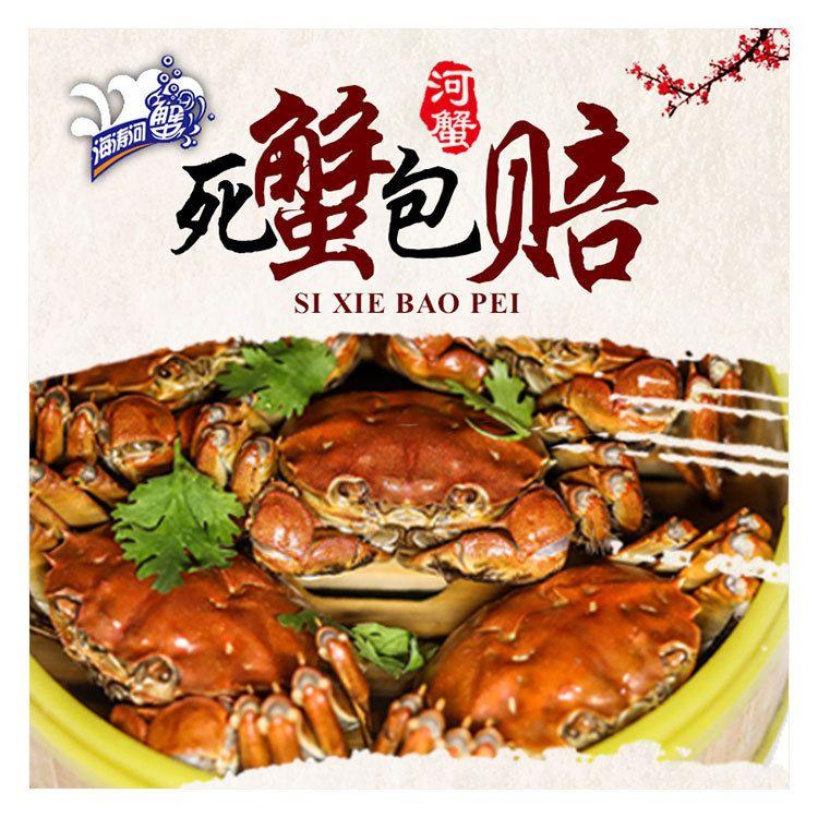 厂家直销公蟹 盘锦鲜活公河蟹大闸蟹批发 东北特色河蟹水产品