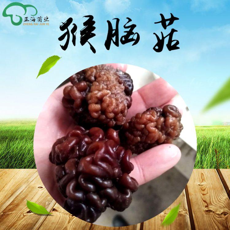 猴脑菇原货批发  猴脑菇销售 猴脑菇干货 猴脑菇现货批发菌类产品