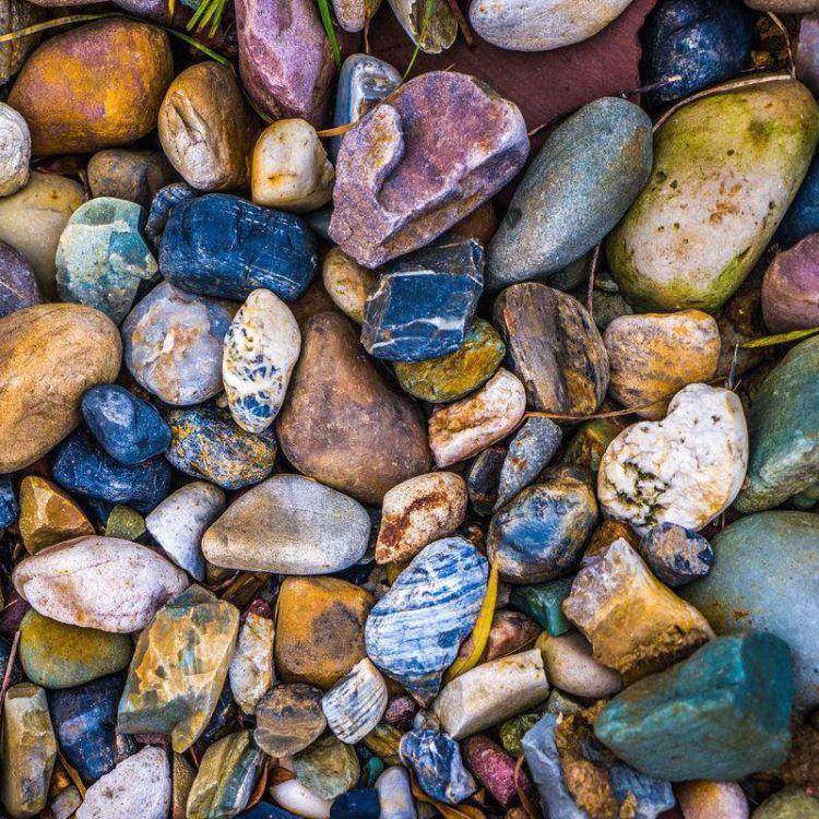 批发鹅卵石 混色鹅卵石 黑鹅卵石 白鹅卵石