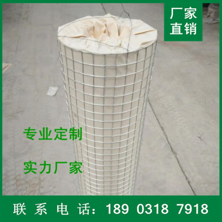 现货供应热镀锌电焊网 养殖绿色铁丝网  抹墙建筑电焊网