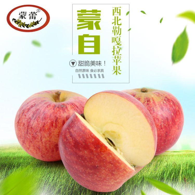 蒙自嘎拉苹果批发 云南新鲜水果红苹果包邮  新鲜水果一件代发