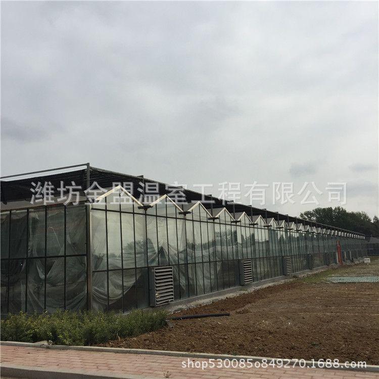 承建5000平方温室大棚玻璃大棚 建设温室大棚玻璃大棚的公司