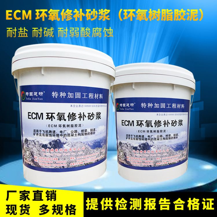 特种建材厂家批发 裂缝填充修补环氧树脂胶泥 环氧树脂修补砂浆