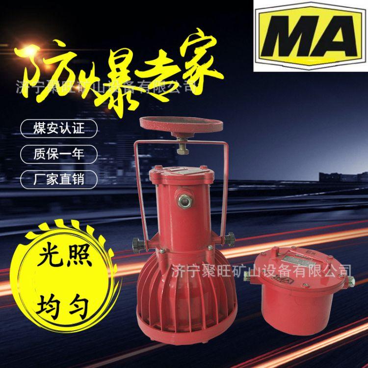 厂家促销 矿用隔爆型投光灯 DGC175127矿用隔爆型投光灯