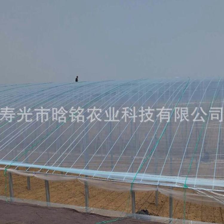 塑料大棚膜 农用大棚膜 塑料薄膜 厂家直销
