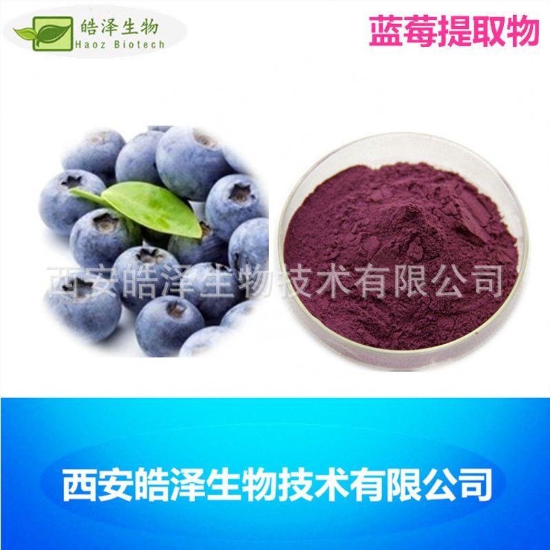 蓝莓提取物 花青素25%蓝莓提取花青素 现货直销 包邮 1kg起订