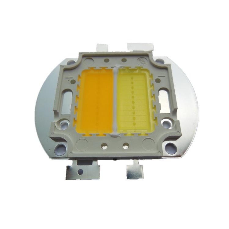 20W双色温LED集成光源 正白暖白一体 台湾晶元芯片 智能照明品牌