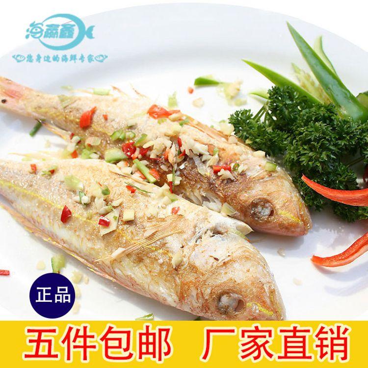 红三鱼金线鱼冷冻水产鲜活鱼类餐饮海鲜生鲜批发直销
