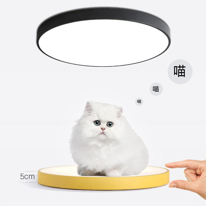 马卡龙吸顶灯圆形超薄led客厅灯现代简约铁艺卧室灯创意阳台灯