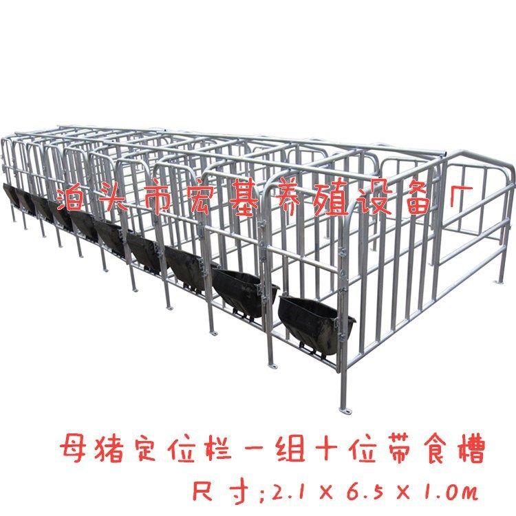 母猪定位栏 10个猪位限位栏 带食槽单体栏 热镀锌母猪定位栏