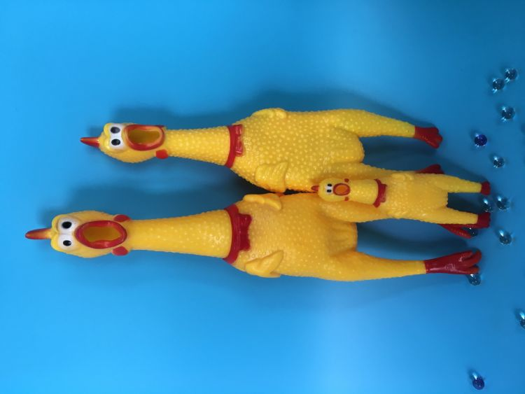 宠物玩具 惨叫鸡 中号 狗狗玩具 搪胶惨叫玩具 宠物玩具