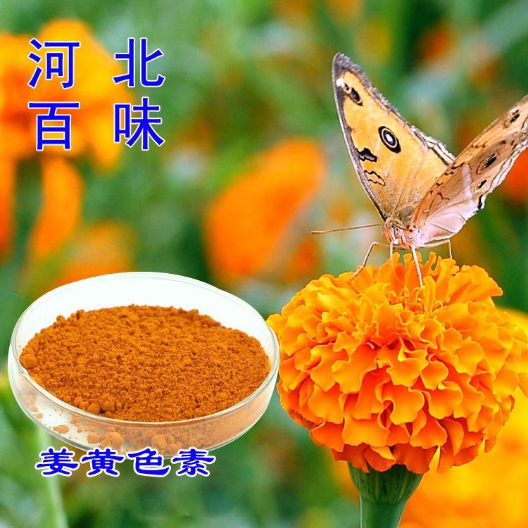 现货供应食用色素 姜黄色素 植物提取色素 量大从优