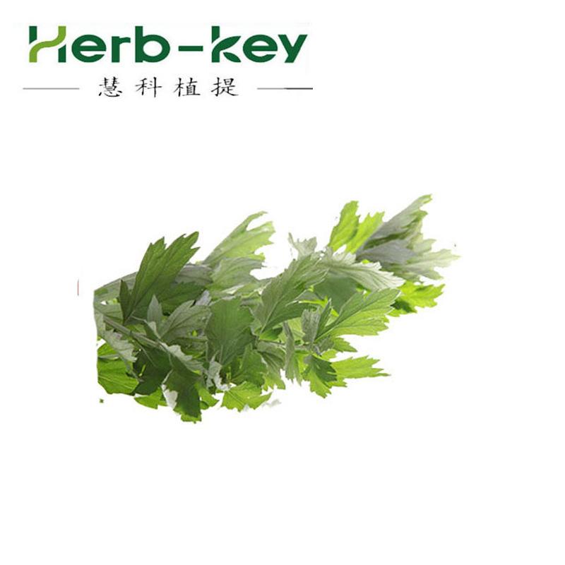 10:1艾叶浓缩萃取粉 艾草提取物 植物成分欢迎采购 艾叶提取物