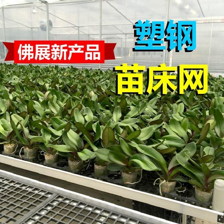温室配件大棚苗床网 塑料苗床 新型花苗培植专用网 厂家直销