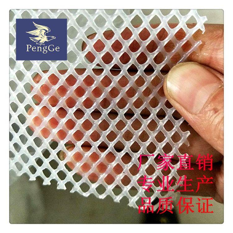 厂家专业生产pe塑料平网养鸡网养鸭网漏粪养殖网
