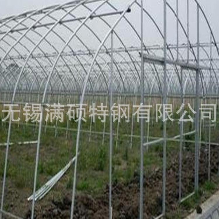 设计安装温室大棚 花卉大棚 连体蔬菜大棚 养殖大棚