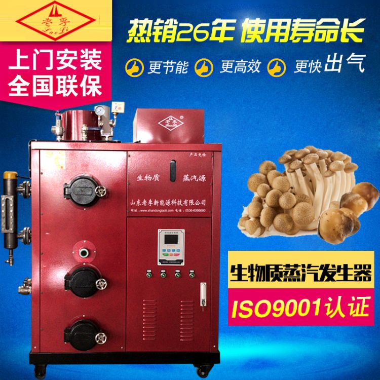 产地货源 生物质颗粒蒸汽锅炉 木耳蒸汽锅炉 香菇蒸汽锅炉