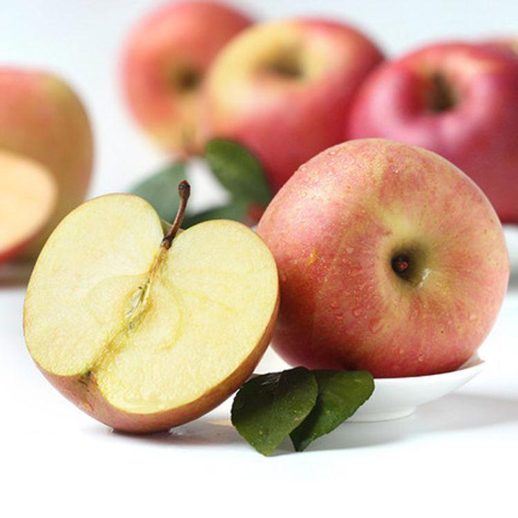 【礼泉红富士10斤包邮】红苹果新鲜水果 非冰糖心 产地一件代发