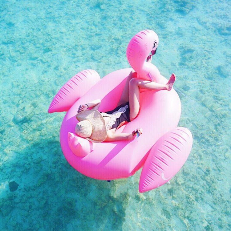 水上充气粉天鹅成人火烈鸟浮排